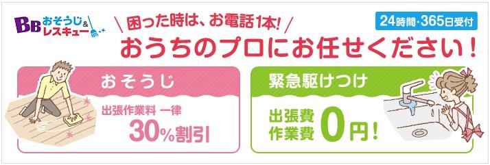 ソフトバンク「BBお掃除&レスキュー」